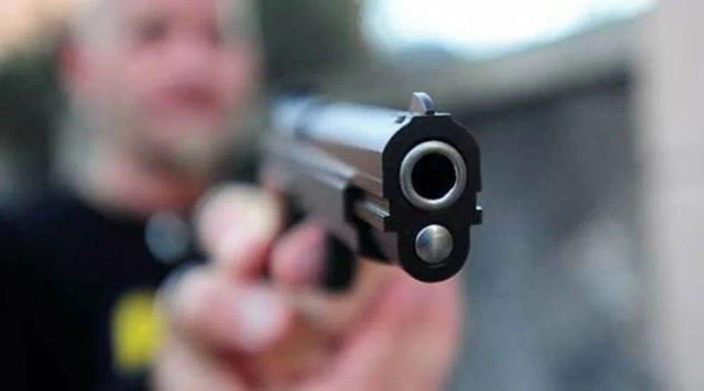 Sussistenza del delitto previsto dall'art. 351 cod. pen. – Brigadiere si appropria di un fucile.